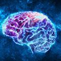 Boostar hjärnfunktionen