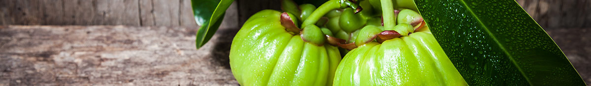 Bildrubrik for Garcinia Cambogia med Garcinia Superfrukt med tillhorande blad mot en neutral bakgrund