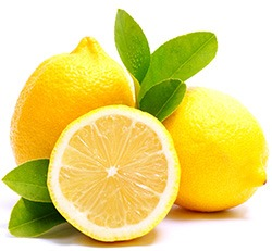 Två citroner som ligger med tillhörande blad mot en vit bakgrund