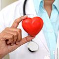 Stödjer hjärtat och kolesterolnivån