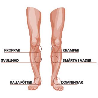 en infographic pa weightworlds circulators fordelar illustrerade pa ett par ben