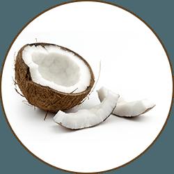 en delad kokosnot med kokos delar framfor mot vit bakgrund
