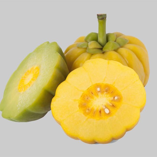 Garcinia Cambogia Pure 279kr