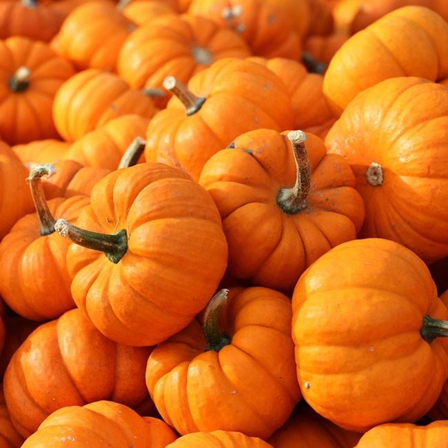 5 ingredienser för en säsongsmässig detox denna höst