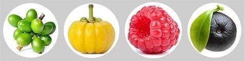 Bild pa fyra olika superfrukter som syns mot en vit bakgrundsbild